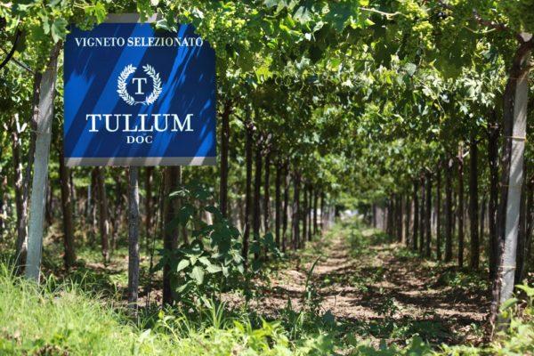 Feudo Antico  - Tullum
